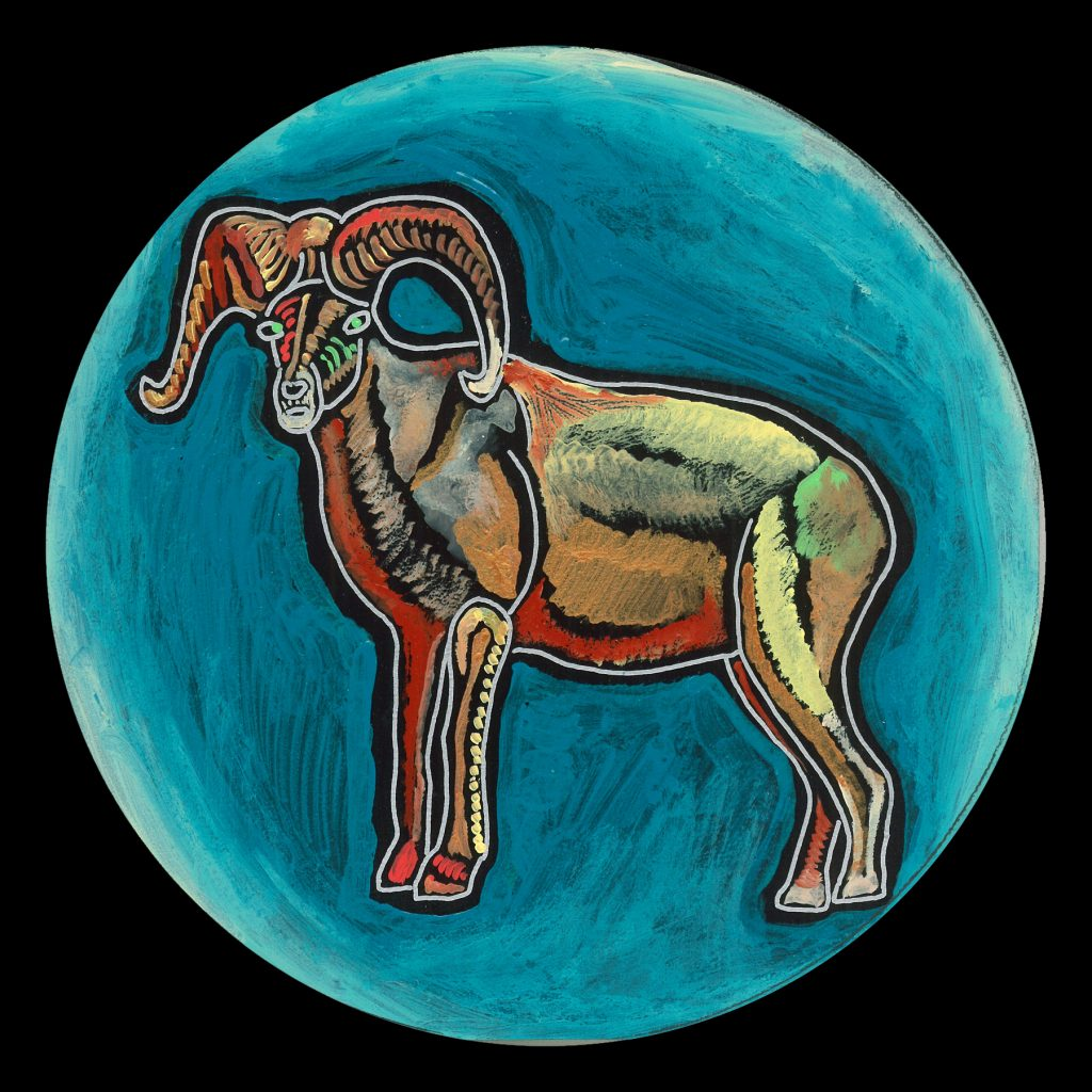 life circle : bighorn sheep