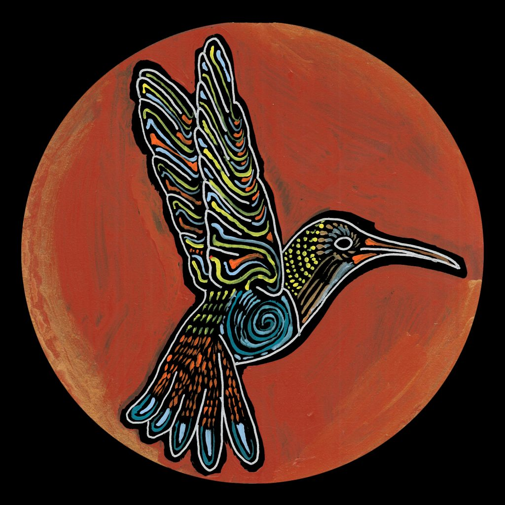 life circle : humming bird